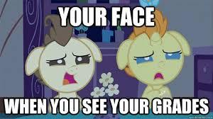 Mlp Funny Meme - pin by stygian glow n on mlp memes pinterest mlp memes mlp and