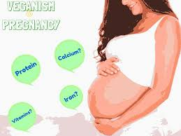 why a vegan diet during pregnancy is good for your child address