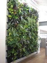 indoor vertical wall garden 100 images lawn garden gorgeous
