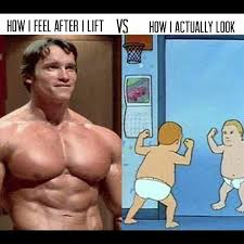 Bodybuilder Meme - bodybuilding meme archives fitness volt bodybuilding fitness