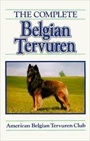 belgian sheepdog breeders new york the complete belgian tervuren kay k maves 9780876050514 amazon