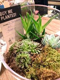 How To Make An Urban Garden - courtney lane west elm urban garden event seattle