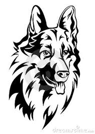 belgian sheepdog tattoo 595b08f865082a4f96de879d40d114f1 jpg 636 900 psi kočky