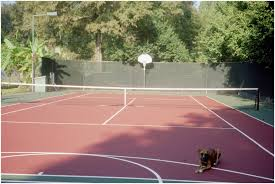 backyards tennis court in backyard backyard design tennis court