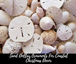 sand dollar ornaments 2017 sand dollar tree