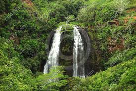 Hawaii forest images Waterfall in hawaii 39 s forest jpg