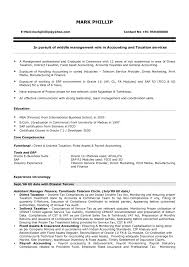 resume writing format pdf junior accountant resume sle pdf junior accountant resume