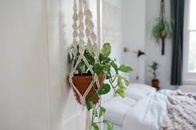Simple Macrame Plant Hanger - made by a simple macrame plant hanger bless the weather