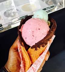 chocolate dinosaur egg chocolate dipped malted waffle cone with church elderberry and a