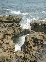 Map Jupiter Florida by Blowing Rocks Preserve Jupiter Fl Beach Where To Go Fl Beaches