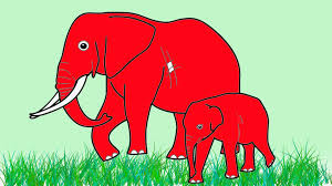 learn colors colors for children learning colors with elephant