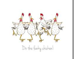 chicken card poultry in motion greeting card chicken