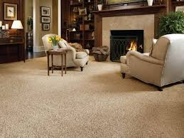 Carpet Ideas For Living Room Stairs Living Room Carpet Ideas Newabstraction Net