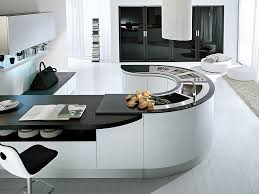 contemporary kitchen in sydney blends cutting edge style with