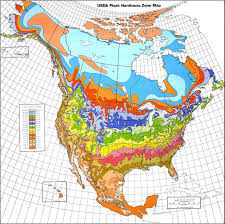 Map Of The United States With State Abbreviations by Understanding World Hardiness Zones U2013 Plant Hardiness Zones In