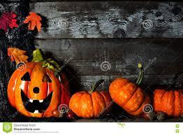 jackolantern screensavers halloween jack o lantern night scene with pumpkin corner border