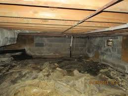 water damage in crawl spaces can lead to mold and termites http