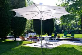 Patio Plants For Sun Take Cover Protect Outdoor Gatherings And Plants From The