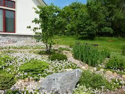 kristin u0027s no lawn yard in minnesota fine gardening
