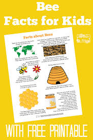 bee facts for bee facts free printables and facts
