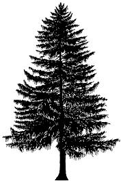 xmas stuff for christmas tree outline clip art clip art library