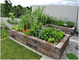 backyards compact diy enclosed backyard vegetable garden house