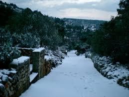 dalmatinka snow in tisno