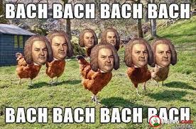 Funny Chicken Memes - funny chickens meme pics bajiroo com