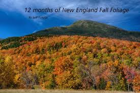 hurricanes kill fall foliage england fall foliage