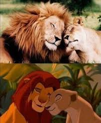 Lion King Cell Phone Meme - 93 best lion king images on pinterest disney films disney