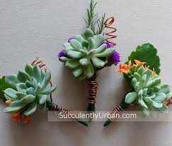 wedding boutonniere wedding boutonniere copper succulents