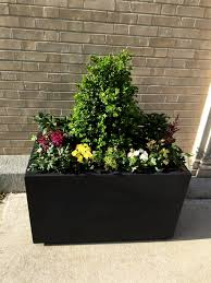 self watering planter morristown high new jersey earthplanter commercial self