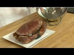 cuisiner un tourteau technique de cuisine faire cuire un crabe