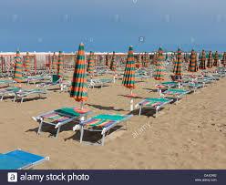 Beach Lounge Chair Umbrella Beach Umbrellas And Lounge Chairs On The Beach Riccione Italy