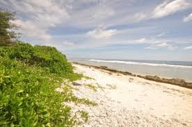 avaro cottage and home rarotonga beachside your chance to own a