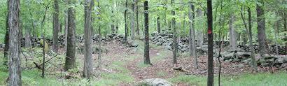 gregg preserve u2013 wilton land conservation trust