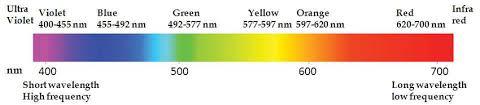 Visible Light Spectrum Wavelength Visible Light Spectrum