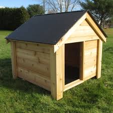 Nice Ideas Interesting Dog Houses Lowes For Animal Care Ideas