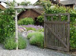 herb garden island kitchen gardens