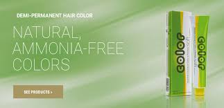 hair color salerm cosmetics