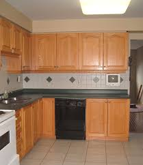 Discount Wood Kitchen Cabinets by Cheap Wood Kitchen Cabinets Elearan Com