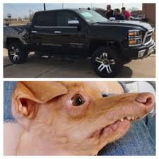 Ford Sucks Meme - i must question the thought process of the designers of the overbite