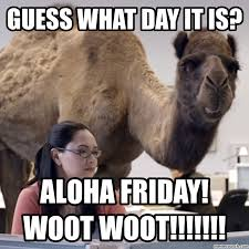 Friday Memes 18 - friday