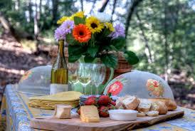 calistoga wine country estate for sale sonoma style