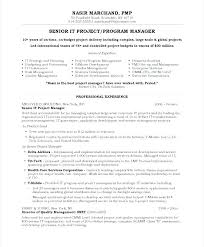 Resume Buzzwords For Management project management resume project management resume buzzwords it