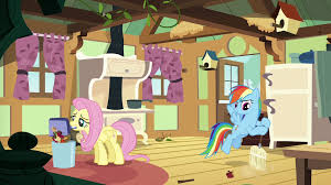 image fluttershy and rainbow clean fluttershy u0027s kitchen s6e11