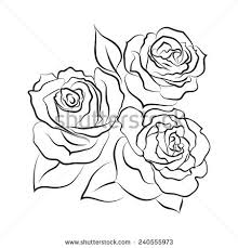three roses on white background vector stock vector 341021807