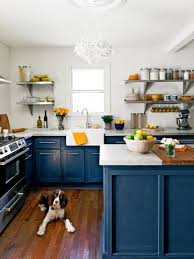Beautifully Colorful Painted Kitchen Cabinets - Blue kitchen cabinets