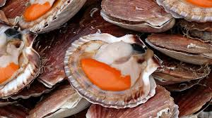 cuisine coquille jacques how to eat jacques shells travel gluttons