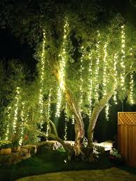 Outdoor Hanging Lights For Trees Hanging Tree Lighting Ibbc Club